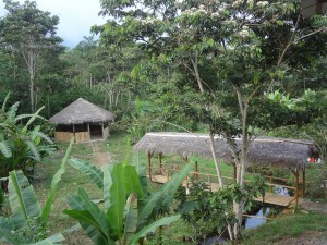 Thatched roof prayer hut and covered bridge at Ninawachi Missions School, Huaticocha, Ecuador